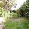 Desbroce manual de jardin de 1100 m2