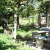 Colocacion de tuberia para fecales en jardin