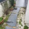 Hormigón/cemento Pulido