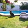 Reformar la piscina de hormigón
