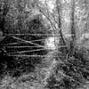 Desescombro camino de finca por derrumbe de muro en montblanc (tarragona)