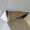 Reparación y sustitución falso techo local comercial (1 placa)