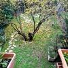 Colocar pavimento de piedra en jardin de 60m2