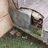 Reparación escalera y persiana