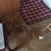 Limpieza integral piso san nicasio