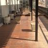 Paisajista para terraza