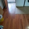 Sustituir 5 m2 aprox parquet