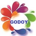 Jose Luis Celorio Godoy