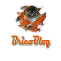 Bricoblog