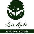 Luis Alfredo  Apolo Apolo