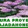 Kirotura Proyectos Majadahonda