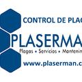 Plaserman, plagas, limpieza y restauración de madera