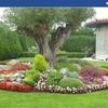 El Jardín De Tus Sueños