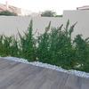 Jardinería Roberto