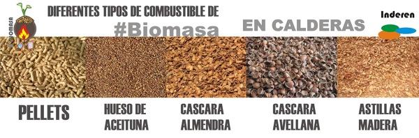 biomasa PELLETS aceituna almendra avellanas astillas madera_670391