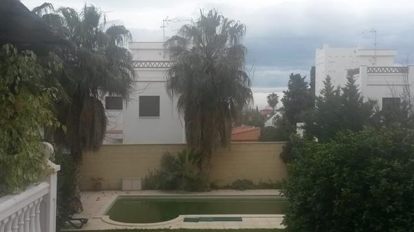Coste de Poda de palmeras